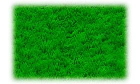 Рисуем траву в фотошопе