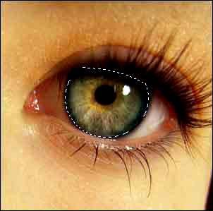 выделение глаза