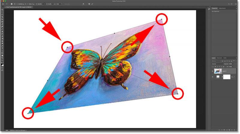 Перетащите любой угловой маркер, чтобы свободно исказить изображение