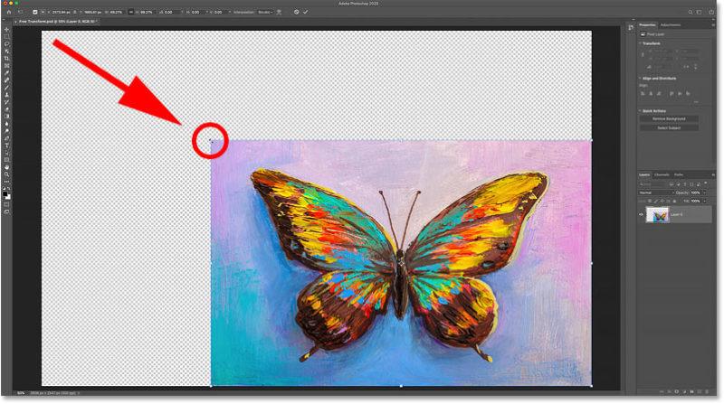 Уменьшение размера изображения заполняет пустое пространство холста прозрачностью