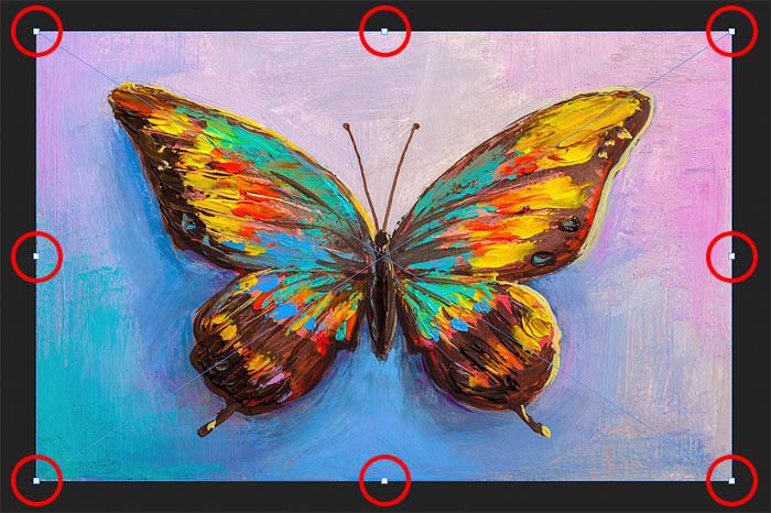 Окно трансформации и ручки Free Transform