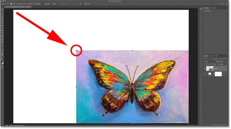 При уменьшении изображения отображается слой заливки сплошным цветом позади него